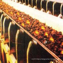 Flame Retardant Pvg 1000s Integral Core Conveyor Belt for Coal Mine