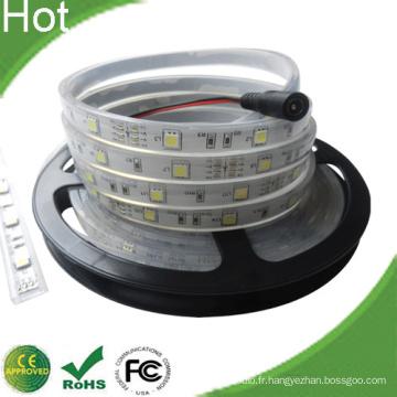 Bande LED flexible RVB SMD3528 / Lumière flexible LED / Bande lumineuse flexible LED