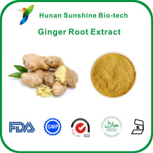 5% Gingerols Ginger Root Extract Relieving Hemicrania with good price