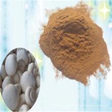 Poudre d'extrait de champignon Agaricus Bisporus de haute qualité
