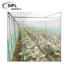 Well-Stocked Agricultural Use Green House Anti Insect Net Waterproof Net for Agriculture