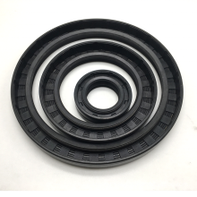 Standard Sizes Rubber Motorcycle Oil Seal TC
