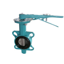 Midline Butterfly Valve to U. S. Standard with Carbon Iron Body