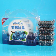 Фабрика оптового изготовленного на заказ печатания пластичная коробка плодоовощ плодоовощ (мешок овоща)
