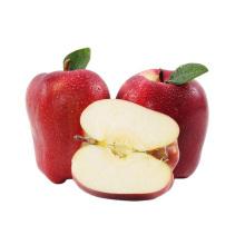 Tianshui huaniu apple super quality good taste huaniu apple price