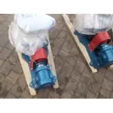 Bomba de engranajes pequeños 2CY bomba de aceite lubricante bomba de engranajes de aceite vegetal