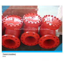 DIN Swing Type Flanged End Cast Iron Check Valve