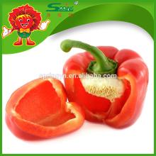 Pimientos rojos frescos de China aka Fresh Red Capsicum