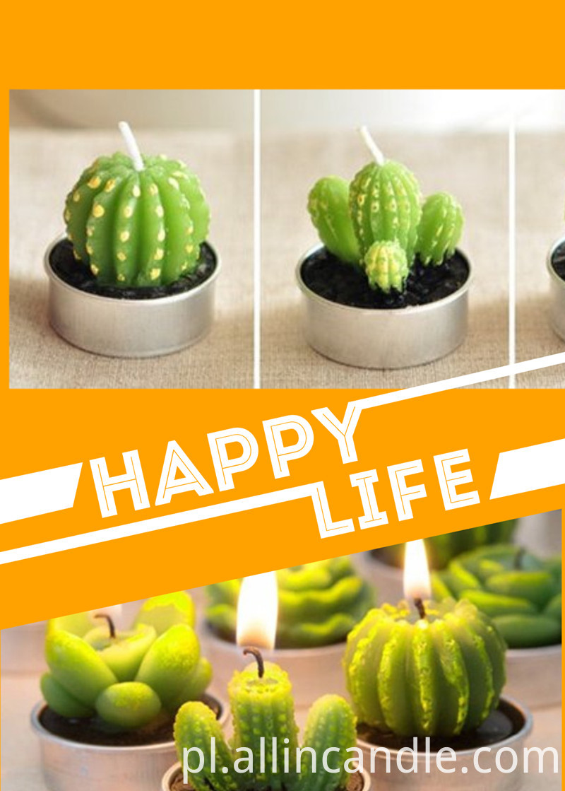 cactus candle for life