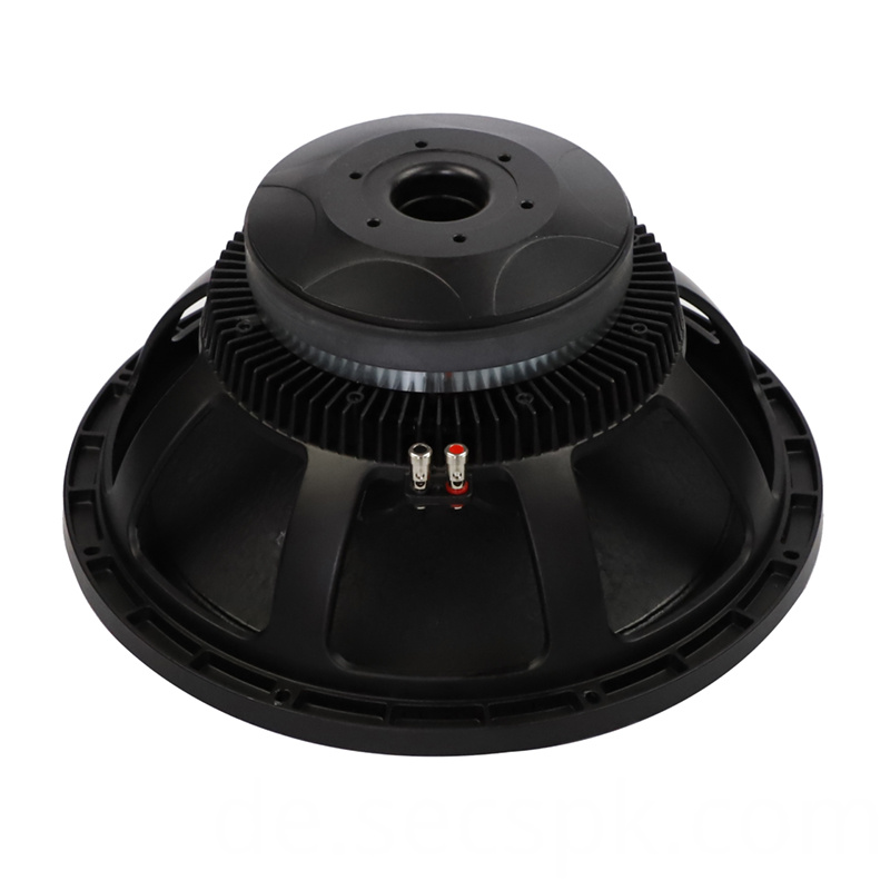 8ohm Party Stage Speaker