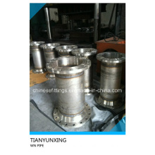 Stainless Steel Weld Neck RF Flange Fittings