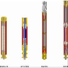 Vertikaler dreiphasiger asynchroner Unterwassermotor
