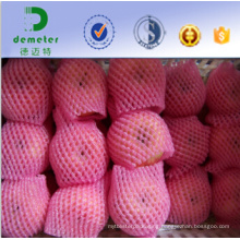 China Professional Manufacturer and Exporter Eco-Friendly Nontoxic Food Grade Foam Mesh Net