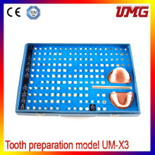 Ce Certification Dcl Material Dental Teeth Models