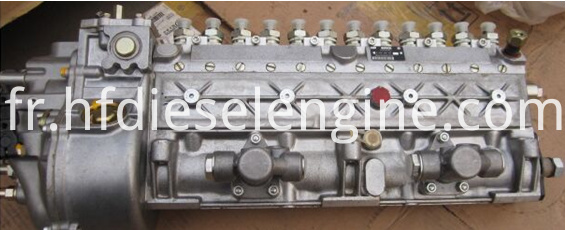 BF12L413FW injection pump