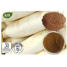 GMP ISO Aprovado 100% Natural Radish Seed Extract
