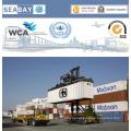Serviço de frete oceânico seguro de FCL / LCL de Shenzhen a Bremerhaven