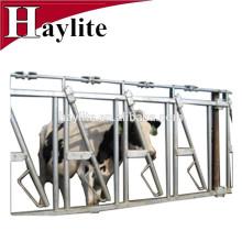 Ganadería ganado panel equipo leche vaca headlock para la venta