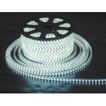 Bande lumineuse LED110V LED Light LED