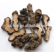 Competitive Price Organic Polyporus Umbellatus Powder