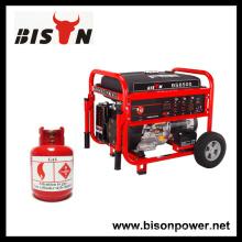 BISON (CHINA) Top Brand Tatsächliche Ausgangsleistung LPG 4000Watts Biogas Methan Generator