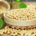 Produits agricoles en gros Soja de haute qualité