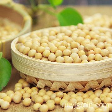 Оптовая торговля сельскохозяйственной продукцией сои высокого качества
