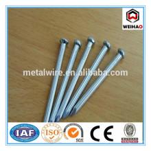 low price galvanized concrete nails