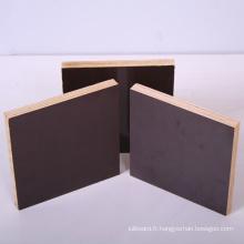 Contreplaqué de contreplaqué de film de Brown / 18mm d'épaisseur