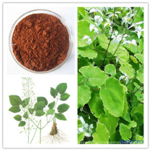 Sex Health Protect Epimedium Extract; Icariina 5% ~ 98% HPLC