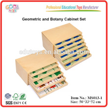 Montessori Teaching Aids Geometric and Botany Cabinet Teaching Resource