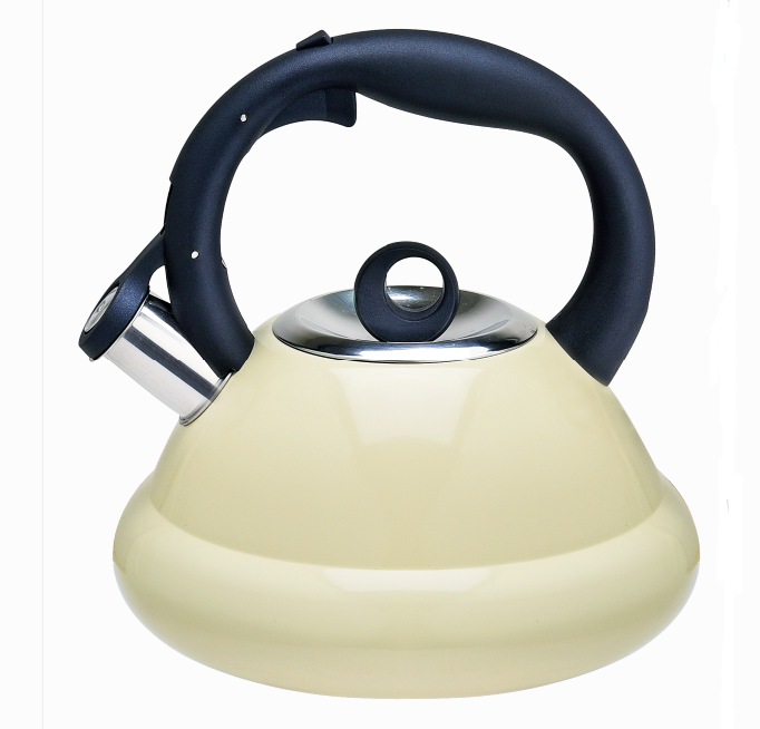 Stainless Steel Whistling Tea Kettle Fh 458c