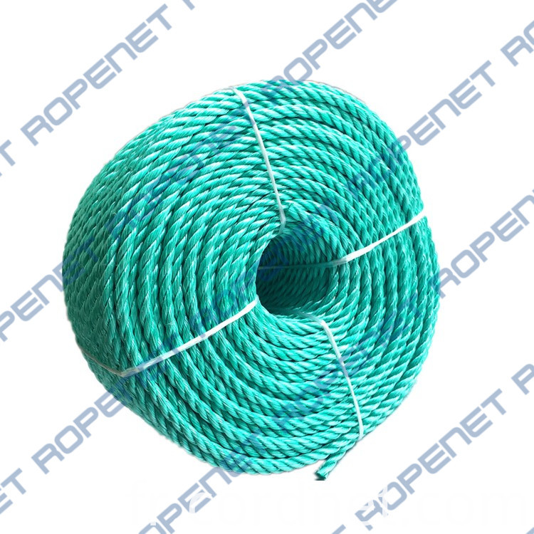 Pp Danline Rope 6mm 110m 18