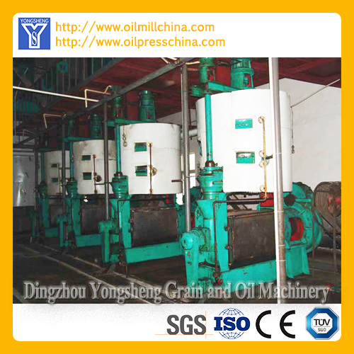 204 Edible Oil Mill Plant