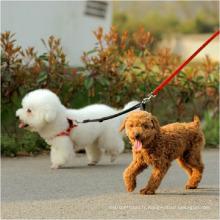 Laisse et collier durables de chien de vente en gros de laisse de chien de deux manières en gros pour 2 chiens