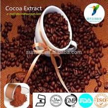 Extrait de cacao naturel 10% de cerveau rafraîchissant