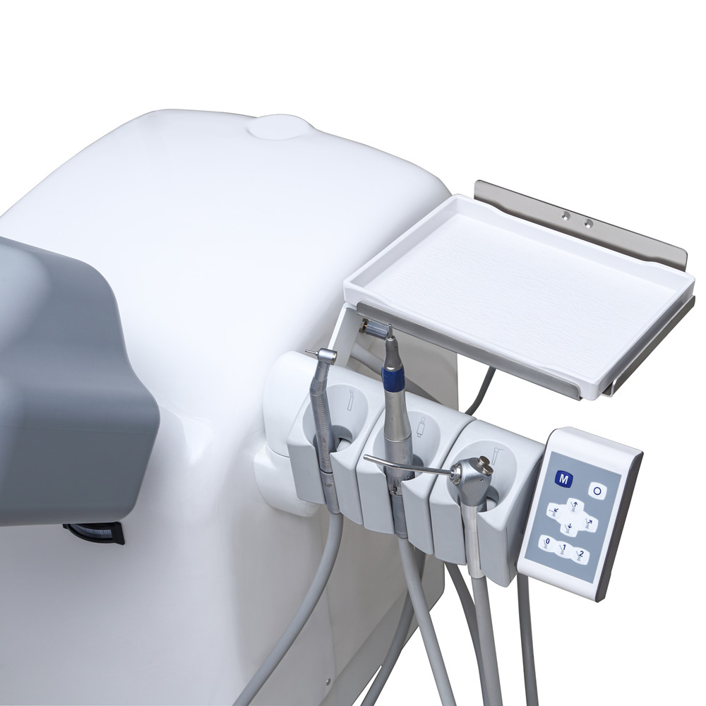 Electric Dental Simulation