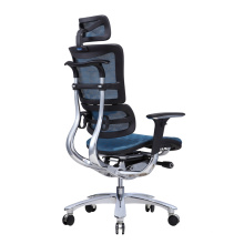 euroteach design ergohuman chair guangdong manufacturer cheap bifma mesh ergonomic chair