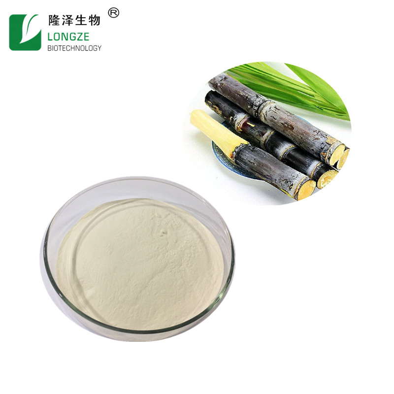 Sugarcane Juice Powder