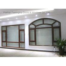 Energy Efficent Design Incline y gire la ventana abatible de aluminio (FT-W80)