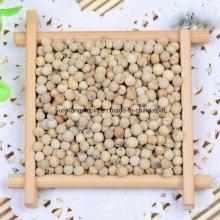 New Crop White Pfeffer, Pfeffer zerkleinert, Peper Powder