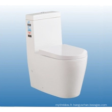 Vente chaude Foshan Chine Sanitaires Wc One Piece Toilet Set