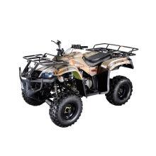 Hammer wassergekühlten Style 250ccm CVT ATV (MDL GA009-3)