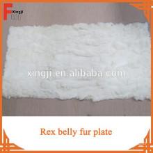 Rex rabbit belly plate