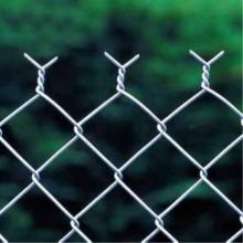 Chain Link Fence/Wire Mesh Fence