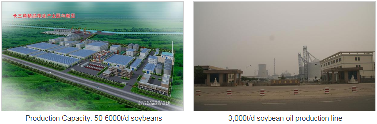 Soybean Oil Production Line
