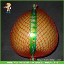 Fresh Fruit High Quality Fresh Pomelo - Jining Rich Farmer International Trade Co.,Ltd