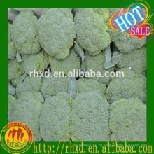 оптовая свежая брокколи