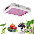 1000W LED Grow Light de doble chip de espectro completo