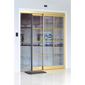 Smart Home Interactive Sliding Doors
